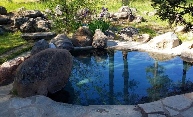 shs meditation pool